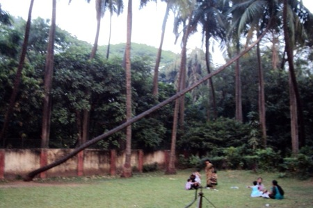 Byculla zoo - Garden and Recreation space