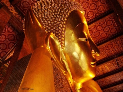 Reclining Buddha at Wat Pho - Thailand tourism