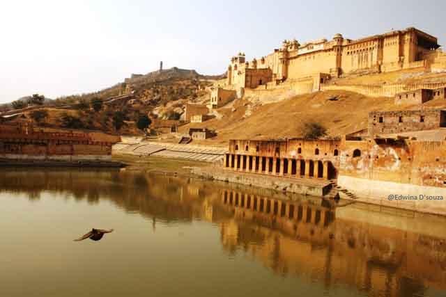 Amber Fort, Jaipur(Photo Credits: Noella D'souza)