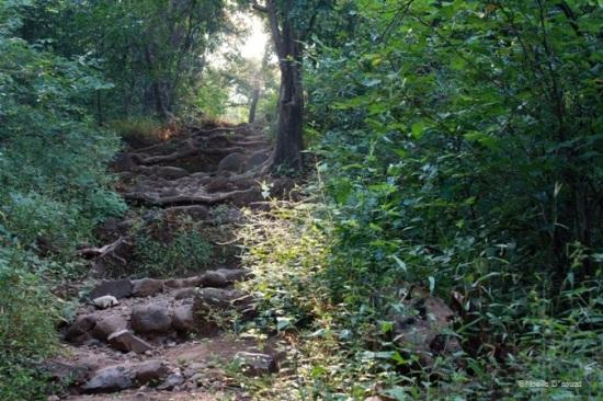 Karnala Fort trek