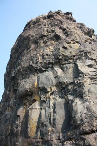 Karnala Fort Pinnacle