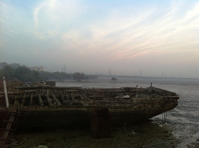 Shipwreck at Sewri jetty