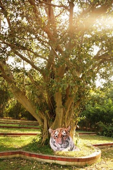 Inside Maharashtra Nature Park