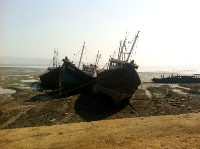 some more shipwrecks at Sewri jetty